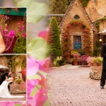 Jackie + Kirk {wedding album}
