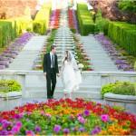 Thanksgiving Point Formals | Terra Cooper Wedding Photographer | Brianna + Dylan