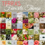 Terra's Favorite Things Friday | Engagement Ring Bling
