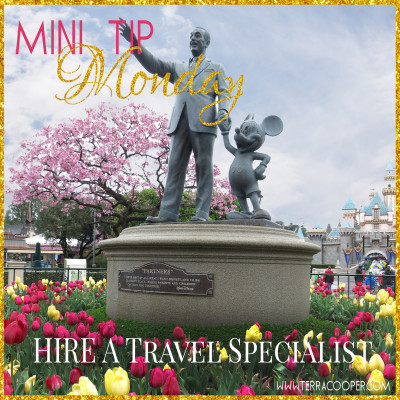Disneyworld Travel Specialist Mouse Tales Travel