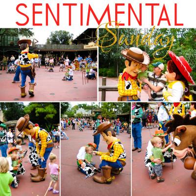 Disneyworld woody's round up