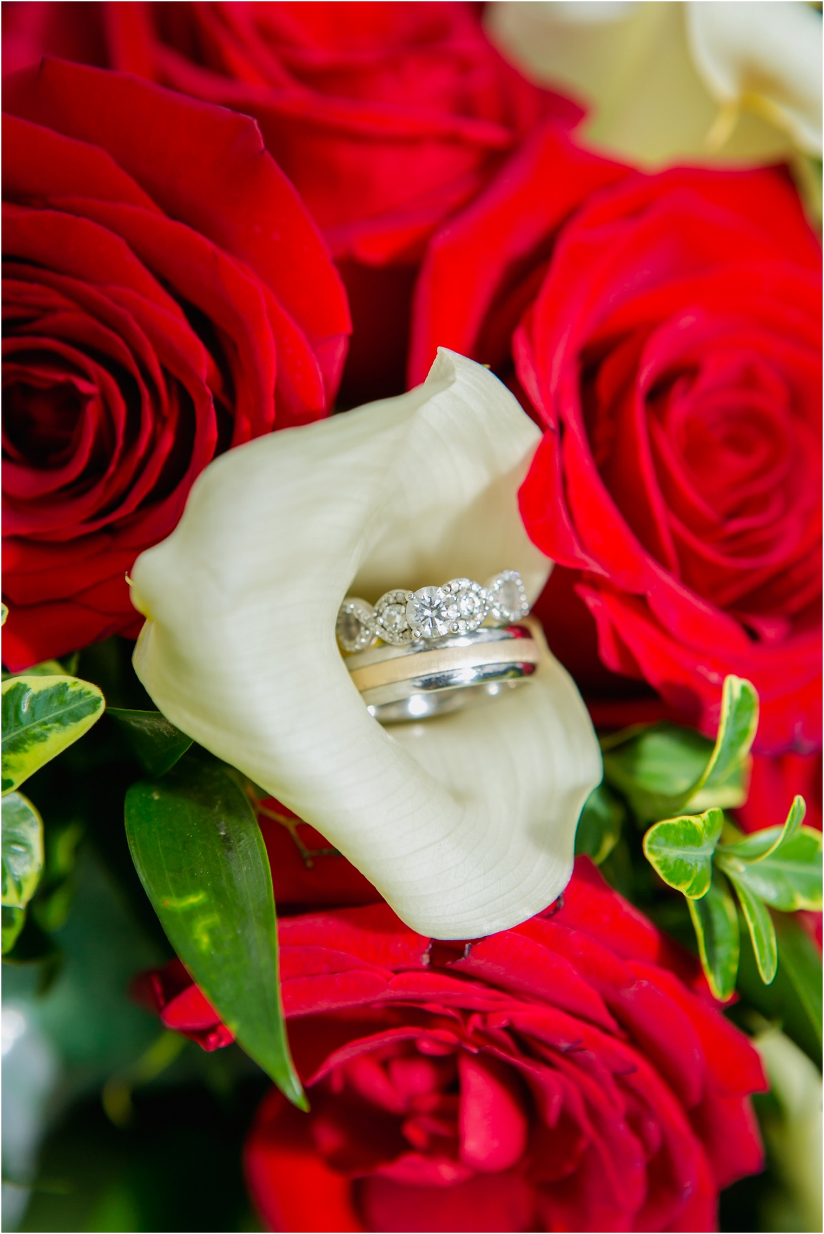 Salt Lake Temple Le Jardin Wedding Terra Cooper Photography_3310.jpg
