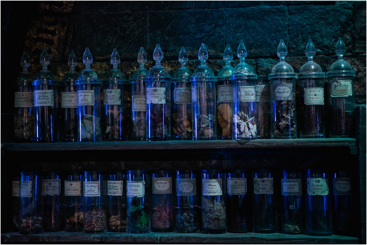 Harry Potter Studios Terra Cooper Photography_3815.jpg