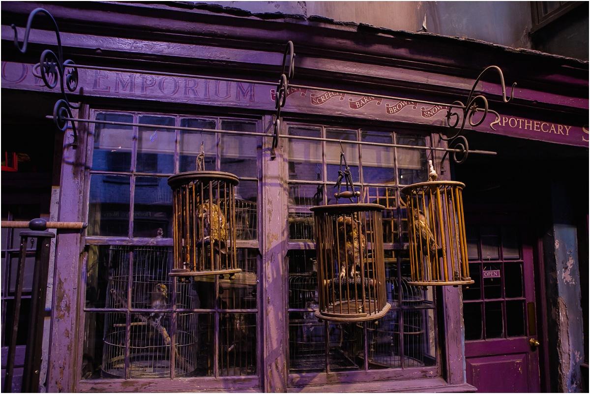 Harry Potter Studios Terra Cooper Photography_3973.jpg