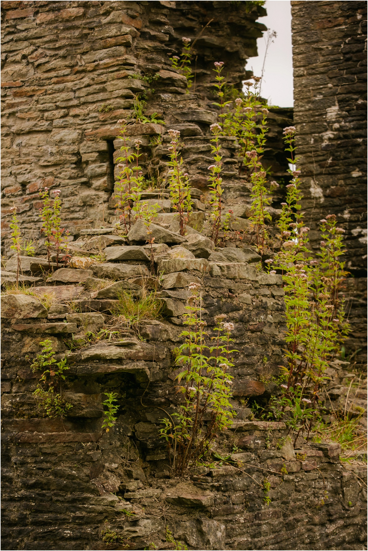 Caerphilly Castle Terra Cooper Photography_4529.jpg