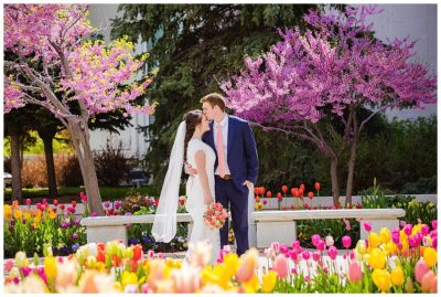 Mount Timpanogos Spring Temple Wedding
